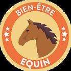 VIGNETTE 2 Equitation.png