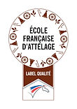 Ecole-Francaise-d-Attelage_large.jpg