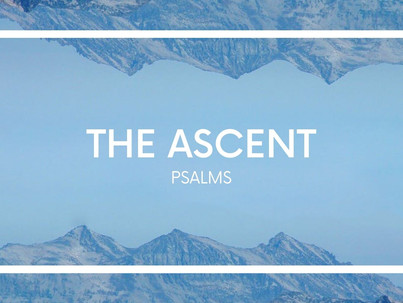 The Ascent: Our Reasonable Response