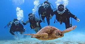 Hanauma Bay scuba diving