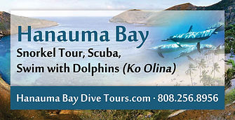 Hanauma Bay Hawaii Snorkel Tours