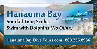 Hanauma Bay Dive Tours