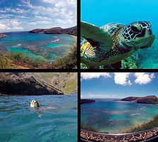 Hawaii Hanauma Bay Snorkel Tours