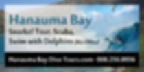 Hanauma Bay Dive Tours