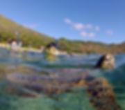 Hanauma Bay hawaii Snorkel Tour