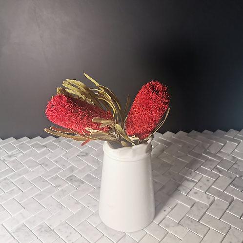 Banksia - per stem