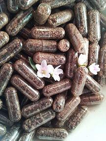 placenta-pills.jpg