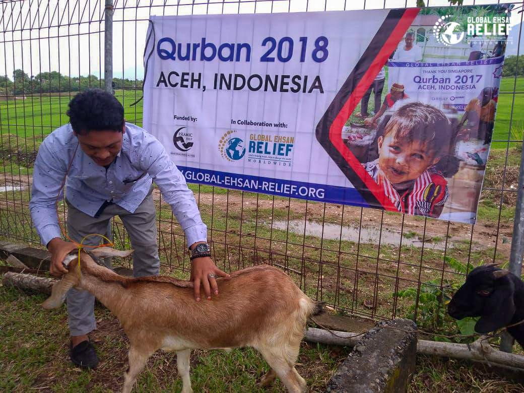 Qurban Indonesia 2018