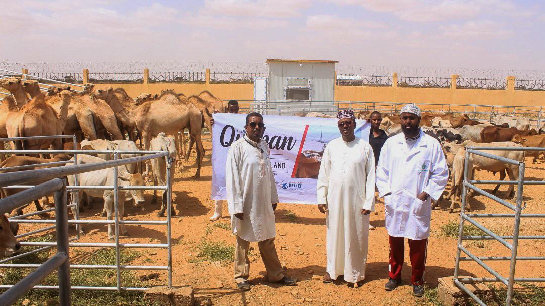 Somaliland_Qurban 2019