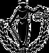 Logo-Direito-PNG-950x1024.png