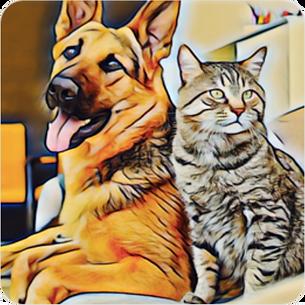 CatDog_wom.png