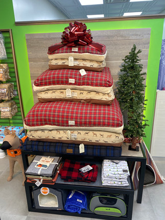 Holiday Beds