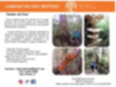 Ficha hiking Sendero del puma 2019-2020_