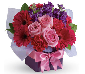 Hot pink box arrangement