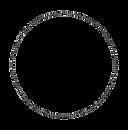 SeppeNobels-stamp-removebg-preview.png
