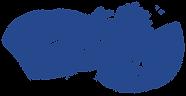 salmon-fillet-blue.png