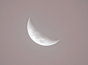 Lunar blush | by Belle Formica