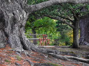 Take a seat | by Belle Formica