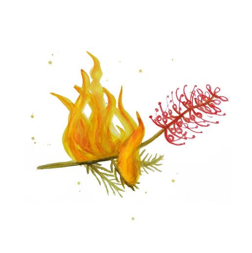 Blaze Rave logo | by Belle Formica