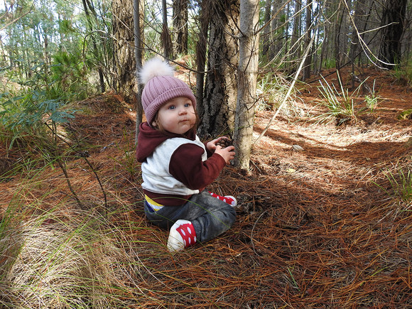 Elvi in the pine forest | by Belle Formica