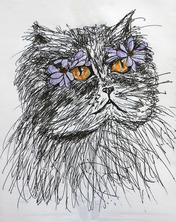 Cat sketch   by Belle Formica