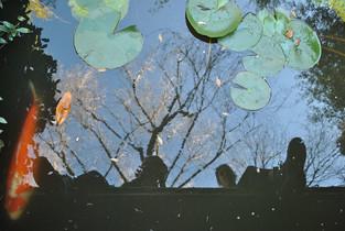 As above, so below | by Belle Formica
