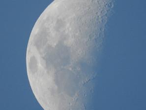 La Luna | by Belle Formica