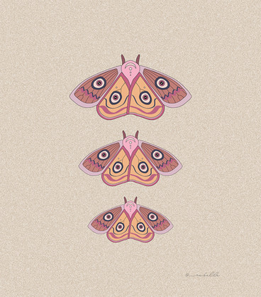 moths raise themselves | by Belle Formica