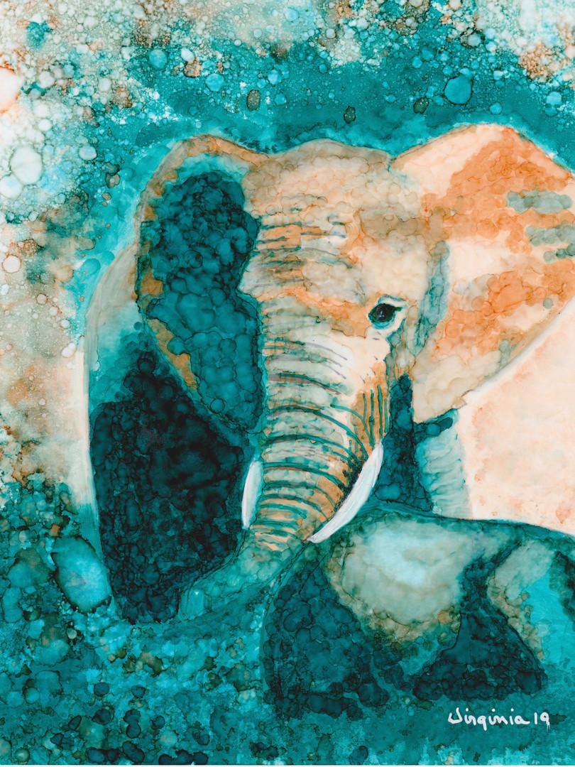 Elephant in Color