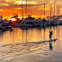 Dana Point Harbor Paddleboarder at sunset