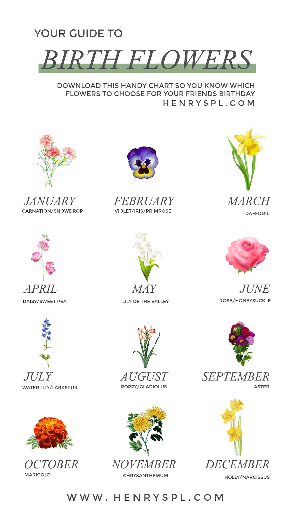 Your Guide To Birth Month Flowers