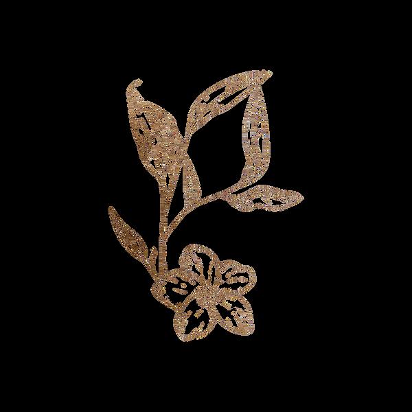 HP Floral Element.png