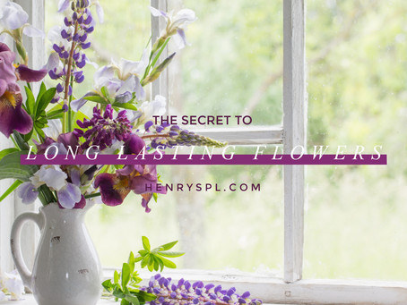 The Secret To Long Lasting Flowers