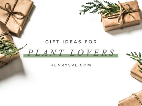 Gift Ideas For Your Green-Thumbed Friends