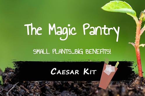 Caesar Kit