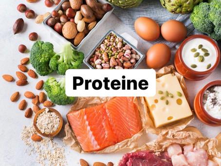 Proteine - Bausteine des Lebens