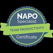 Team Productivity Specialist Certificate