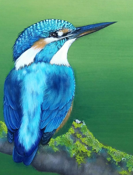 Ijsvogel acryl art painting by cicila postma