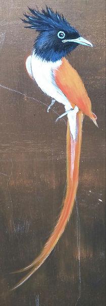 acryl art bird by Dutch artist Cicilia Postma