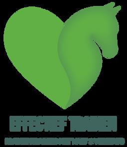 Effectief Trainen