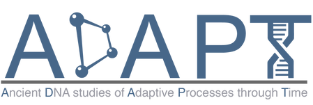 ADAPT Logo.png