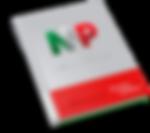 Advanced Guide - Diretrizes Essenciais para o seu logotipo