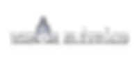 Logo Vapor Elétrico