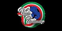 Logo Vida Italiana