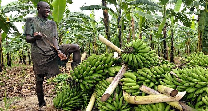 our-work_where-we-work_africa_uganda_her