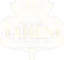 Taheni Logo Outline no Background.png