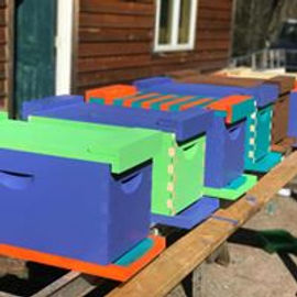 colorful nucs.jpg