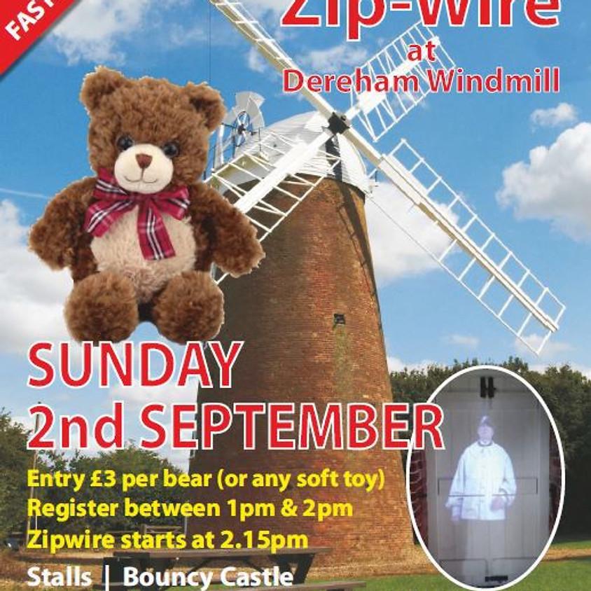 Teddy Bear Zip Wire