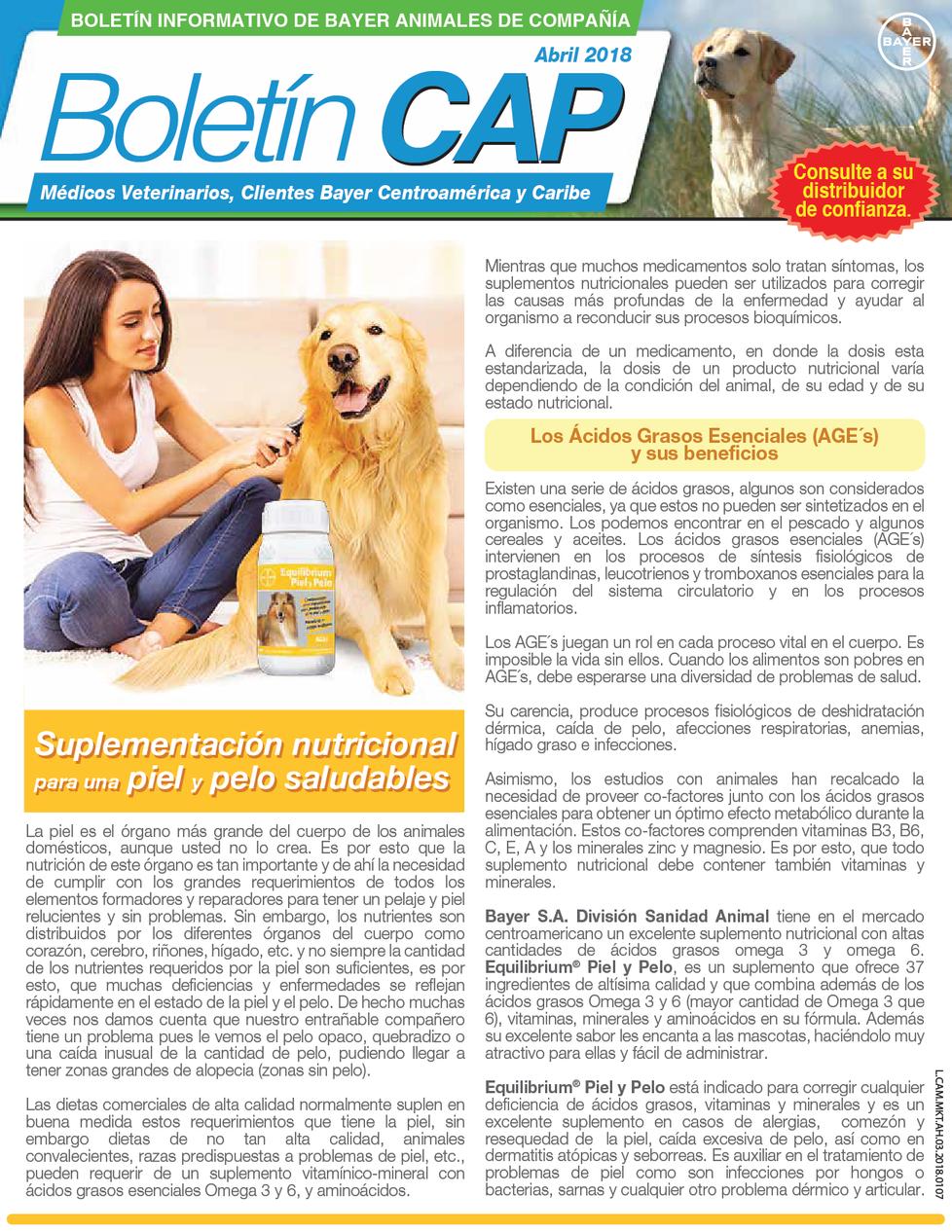Boletín para cuidado de tu perro