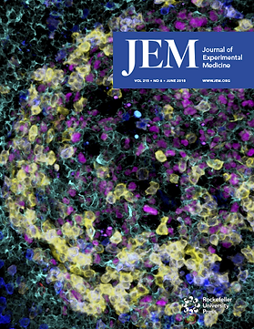 m_jem_215_6_cover.png